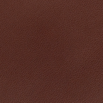 Silica Leather, Raisin