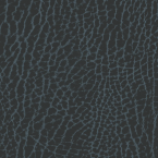 Brisa Mokume, Starry Night